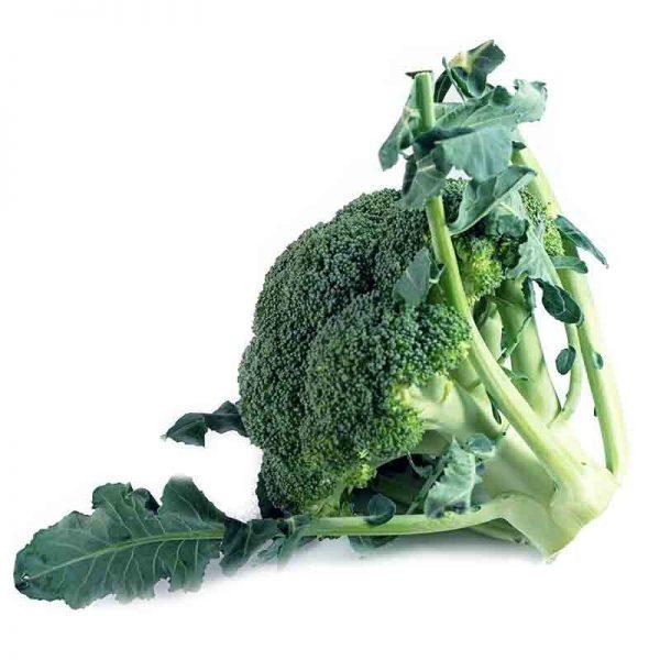 Brocoli organico